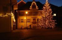 Hotel Gasthof zum Ochsen Image