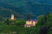Hotel Schloss Hornberg Image