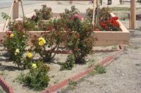 Desert Inn Image