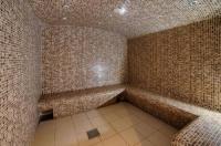 NH Lyon Airport Image