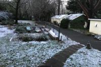 Backyard Garden Oasis Image