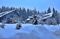 Resident Resort Harrachov - Wellness & Grotta Spa Image