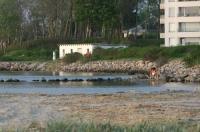 Ferienwohnung Muschel und Leuchtturm Image