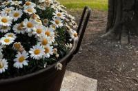 Agriturismo Corte San Girolamo Image