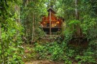 The Canopy Rainforest Treehouses & Wildlife Sanctuary Image
