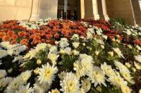 Edom Hotel Image