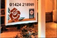 English Rose Image