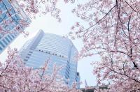 Strings Tokyo Intercontinental Image
