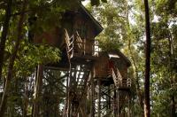Permai Rainforest Resort Image