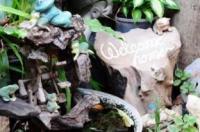 Sukhothai Guest House Image