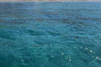 Maneas Beach Hotel Image