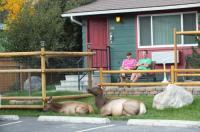 Yellowstone Gateway Inn Image
