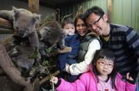 Fauna Australia Wildlife Retreat Image