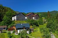 Alpenhotel Dachstein Image