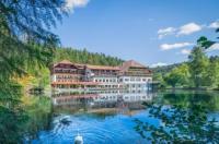 Hotel Langenwaldsee Image