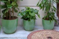 Apartamentos La Casa del Pozo Santo Image