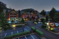 Fairfield Inn & Suites By Marriott Gatlinburg North Image