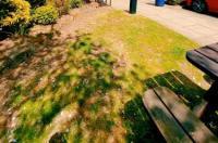 Redwings Lodge Rutland Image