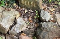 Linden House Image