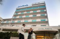 Hotel Pineta Image
