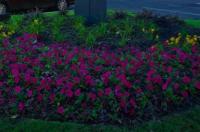Hampton Inn Atlanta Canton Image