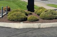 Royal Inn Eugene Image