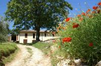 La Perticara Farm House Image
