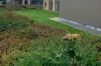 Hobbit Hotel Mechelen Image