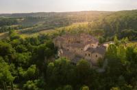 Castel Monastero Image