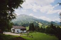 Dreimäderlhaus am Berg Image