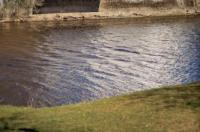 Hotell Villa Rönne Image