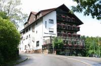 Hotel Ludwigstal Image