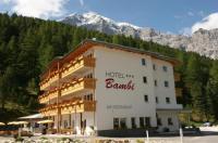 Hotel Bambi Am Park Image