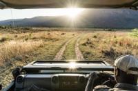 Entabeni Safari Conservancy Image