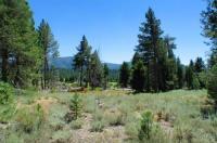 Sawmill Tahoe Retreat Image