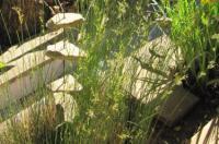 Sandstone Chameleon Guest House Image