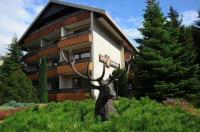 Kur- und Gesundheitshotel Zum Goldenen Hirsch Image