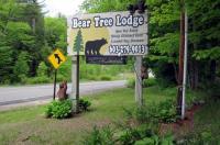 Bear Tree Lodge Image