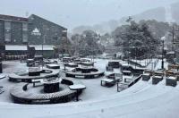 Thredbo Alpine Hotel Image