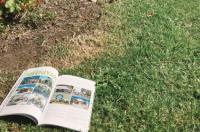 Meeniyan Motel Image