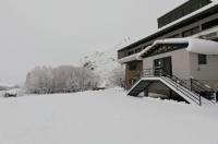 Hotel Hualum Image