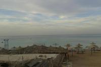 Apartments at Al Dahar Area Image