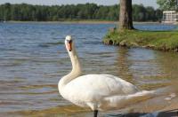 Hotel Vitalia Image