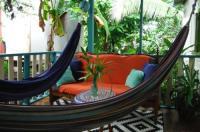 Panama's Paradise Saigoncito Image
