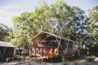 Port Stephens Treescape Image