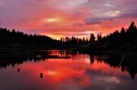 Lakeshore Inn Image