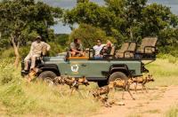 Kambaku Safari Lodge Image