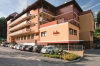 Wellness Hotel Rezidence Ambra Image