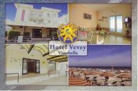 Hotel Vevey Image