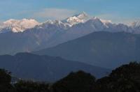 Rhododendron Dell Exoctic Resort - Darjeeling Image